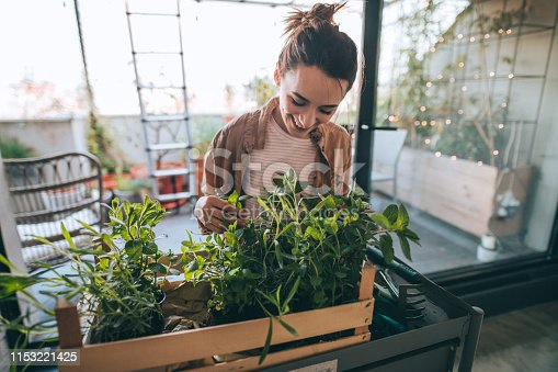 Young woman setting up and arranging greenery on her building terrace