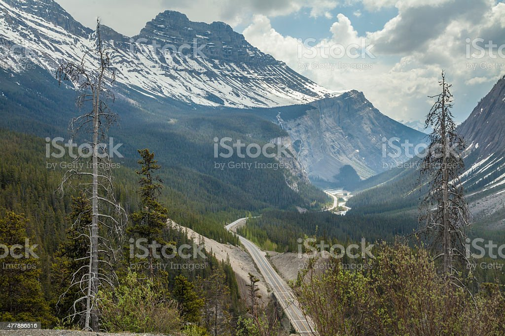 Going north on the Banff to Jasper road stock photo
