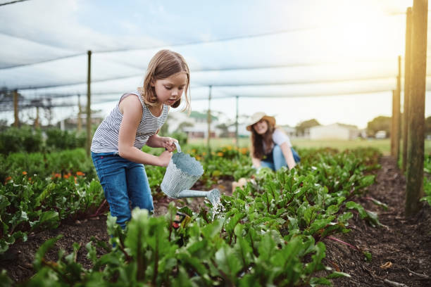 Going organic Full length shot of a young mother and her little daughter working on the family farm crop plant stock pictures, royalty-free photos & images