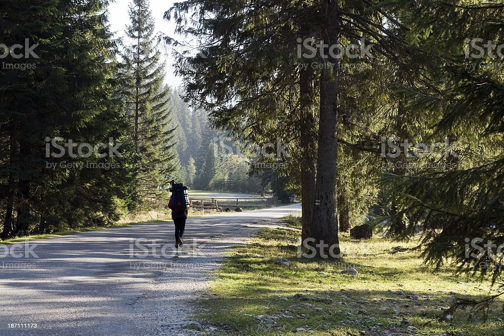 Going to the mountains royalty-free stock photo