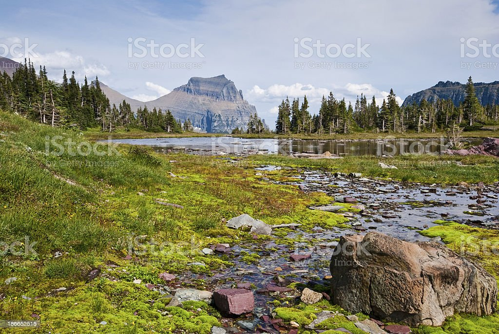 Going-to-the-Sun Mountain from Logan Pass Going-to-the-Sun Mountain stands prominently behind this alpine tarn located on the Continental Divide near Logan Pass in Glacier National Park, Montana, USA. Beauty In Nature Stock Photo
