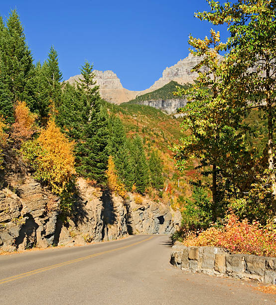 going-to-the-sun-road, glacier national park - going to the sun road stock pictures, royalty-free photos & images