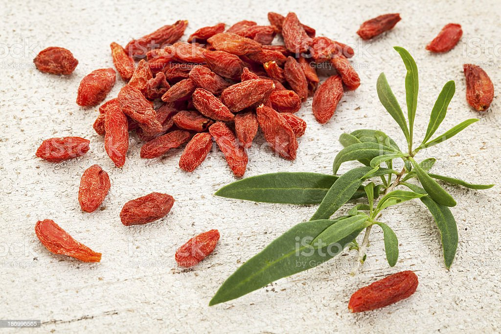 goji berry with a leaf royalty-free stock photo