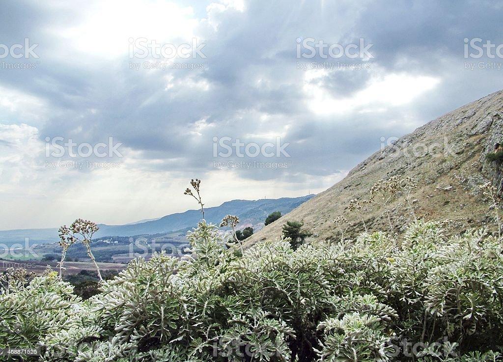 Golan Heights, Israel royalty-free stock photo
