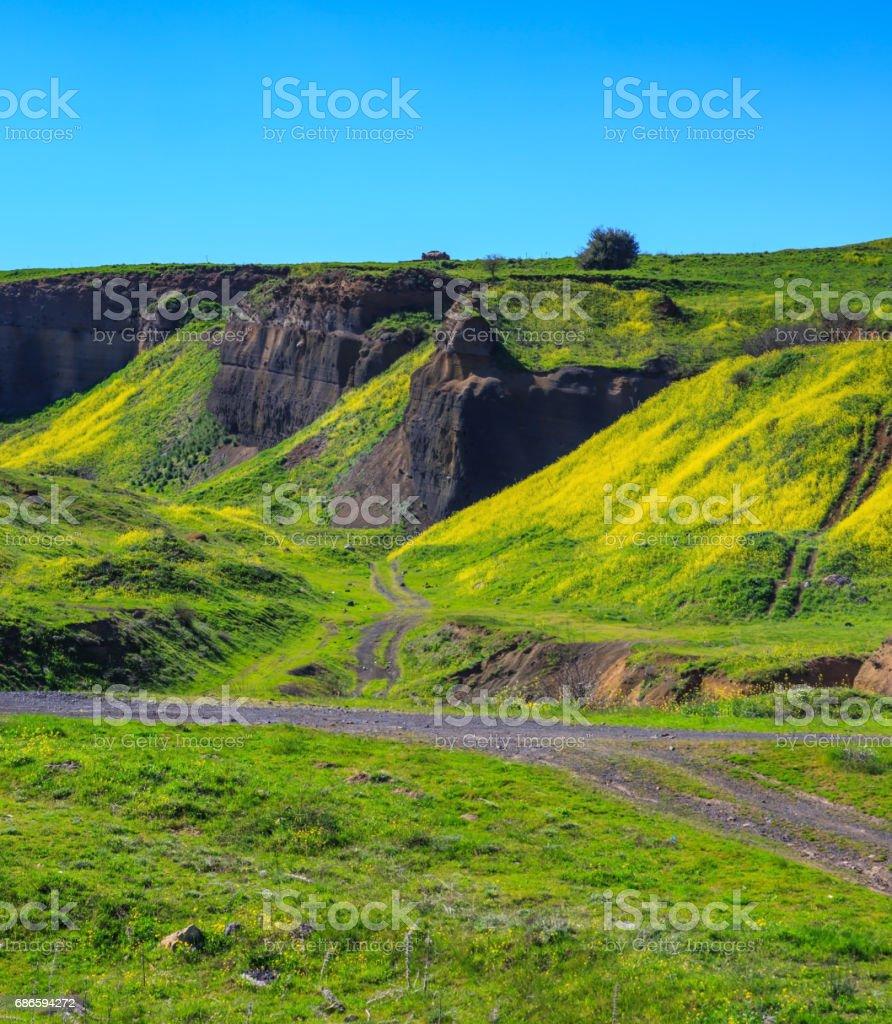 Golan Heights stock photo