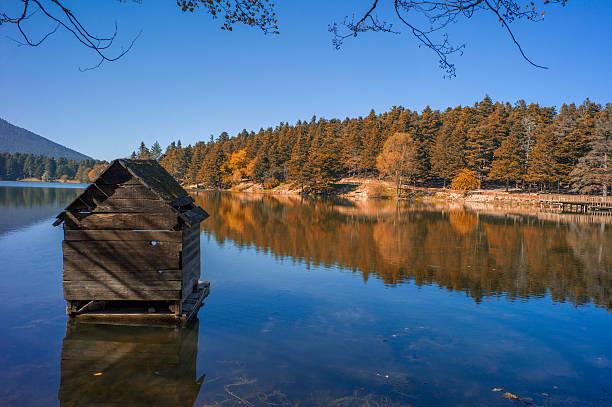 golcuk lake national park during autumn at bolu turkey - 볼루 뉴스 사진 이미지