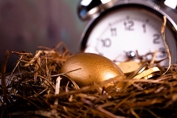 Gold and Golden Nest Egg with time clock on background Time to Save.  Gold and Golden Nest Egg with time clock on background. nest egg stock pictures, royalty-free photos & images