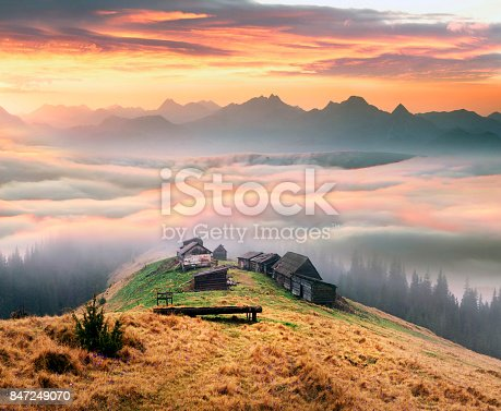 On the Montenegrin ridge Ukraine snow fall on the background of bright colors of the autumn landscape. Alpine Heath Black Mountain shine beautiful colors of purple and gold moss grass