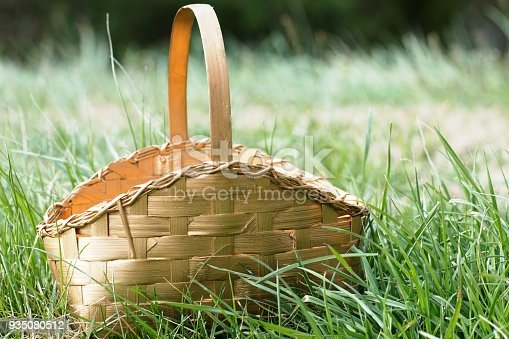 Gold Basket Sitting in Green Grass