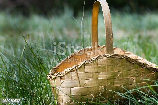 Gold Basket Sitting in Green Grass
