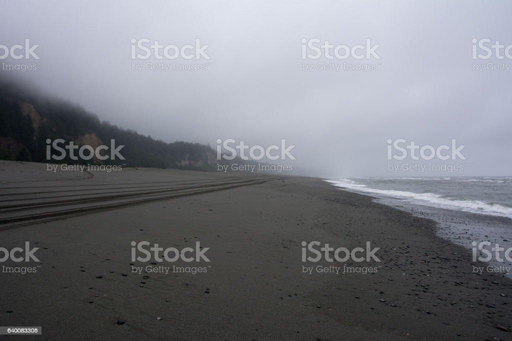 Gold Bluffs Beach, California stock photo