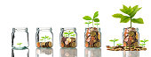 istock Gold coins and seed in clear bottle on white background,Business investment growth concept 850913306