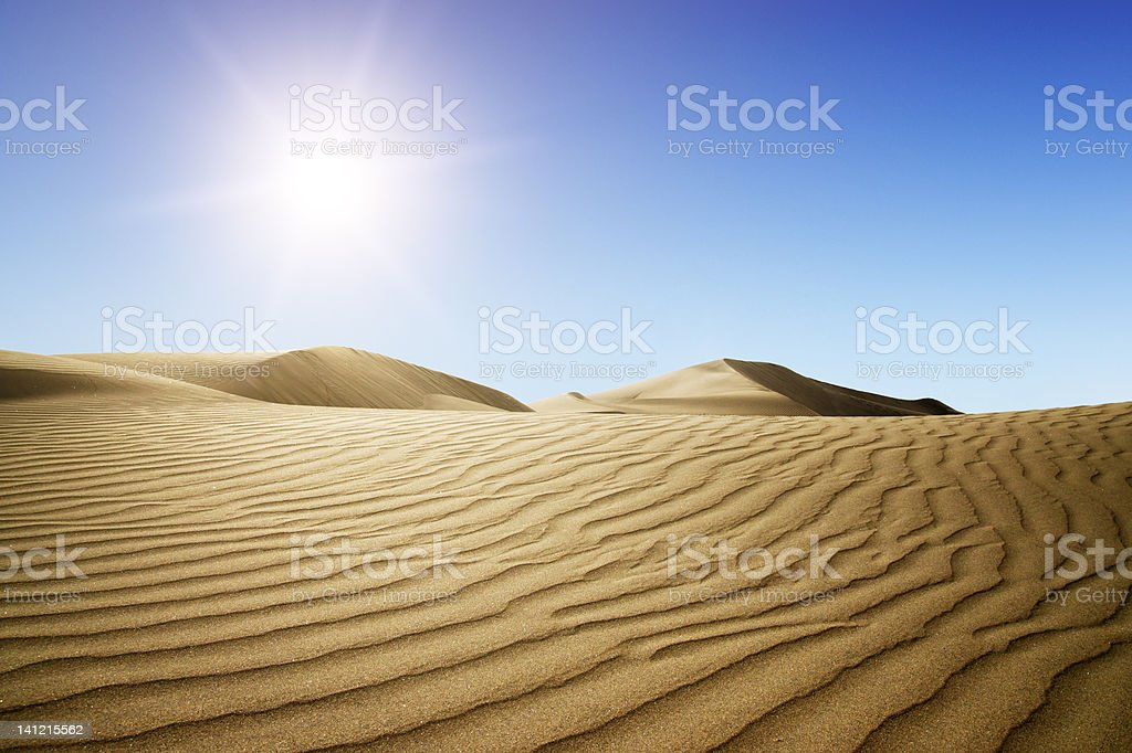 Gold desert into the sunset. royalty-free stock photo