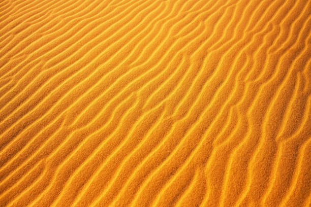 Gold desert into the sunset. Sand texture. stock photo