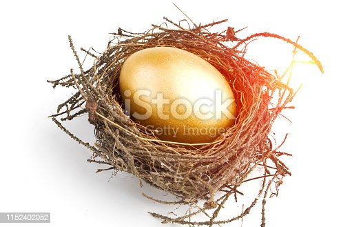 Gold egg in nest isolated on white background.