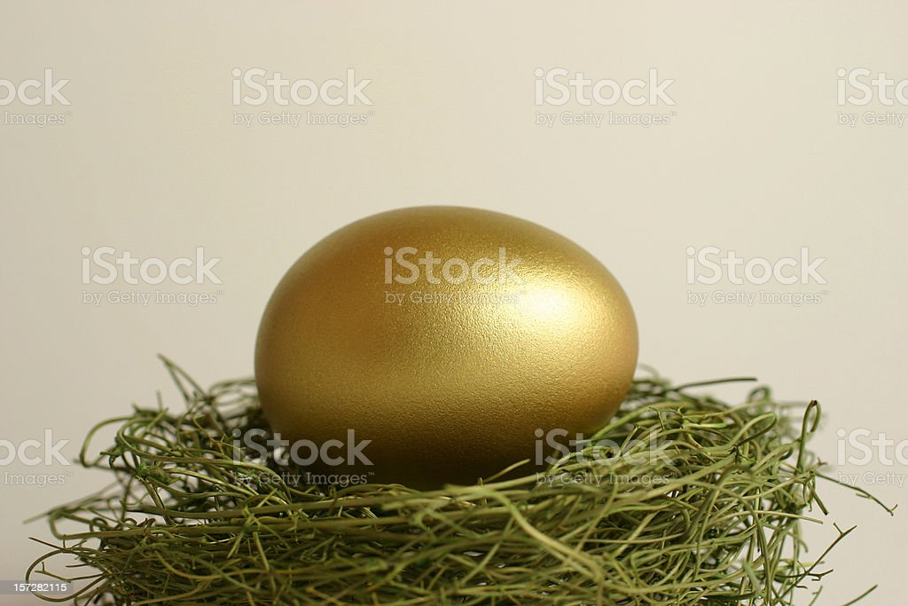 Gold Egg on a Nest royalty-free stock photo
