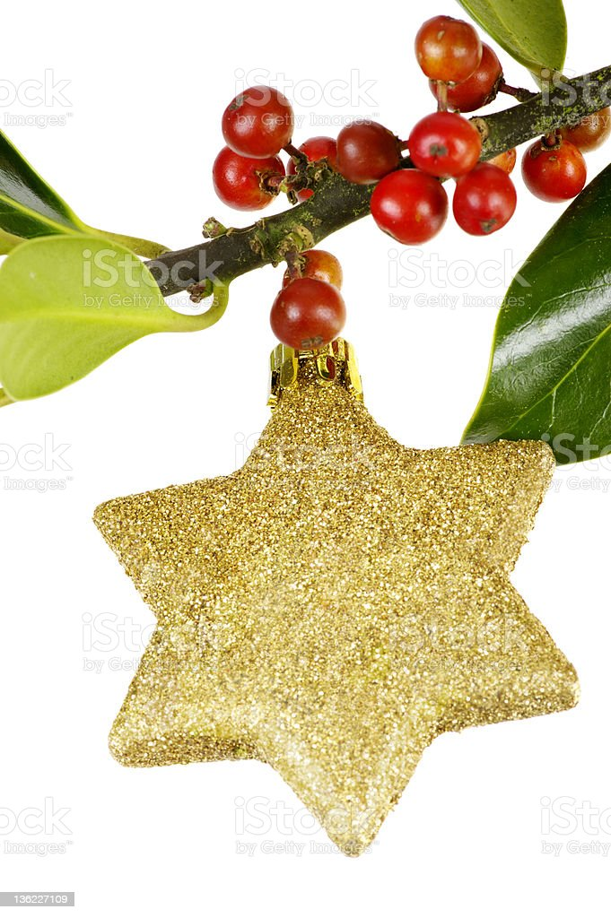 Gold Glitter Star On Holly Branch royalty-free stock photo