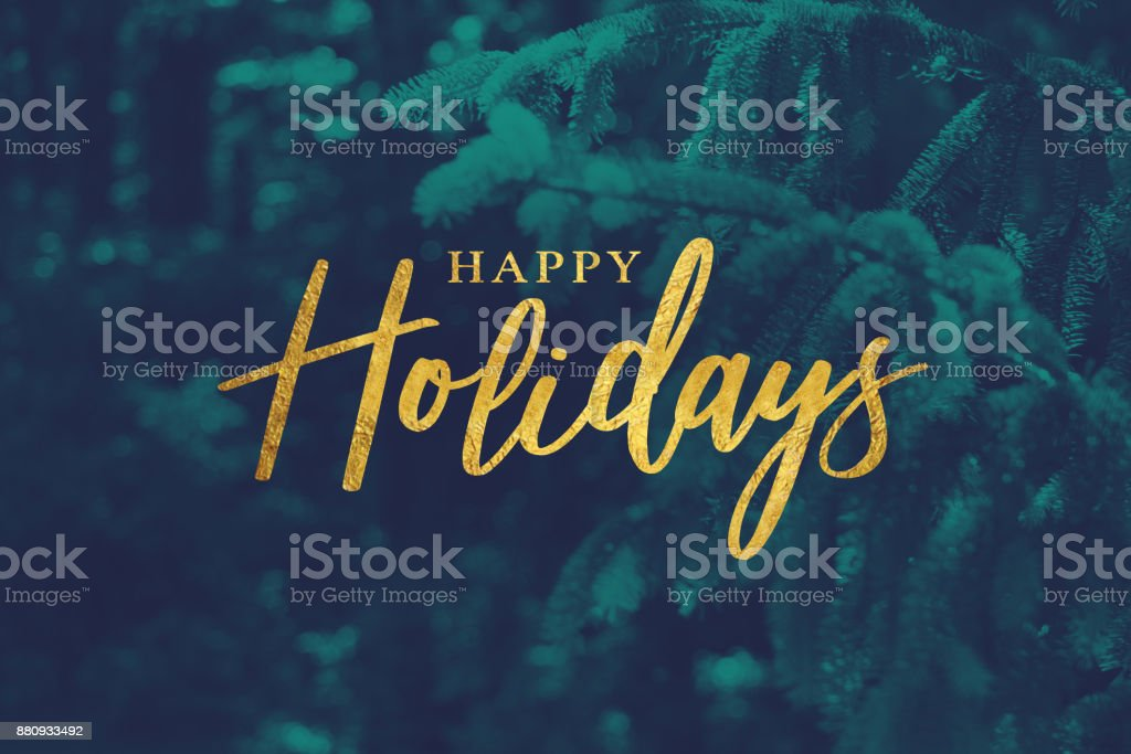 Gold Happy Holidays Script with Evergreen Background stock photo