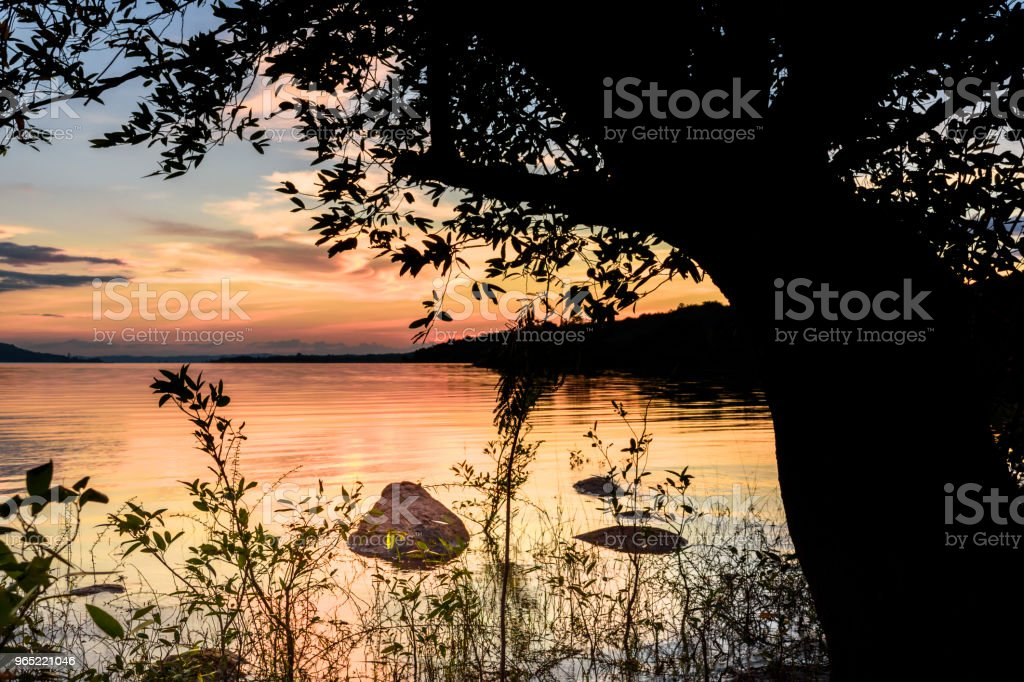 Gold hour landscape with lake royalty-free stock photo