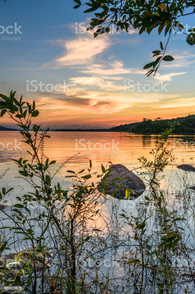 Gold hour landscape with lake zbiór zdjęć royalty-free