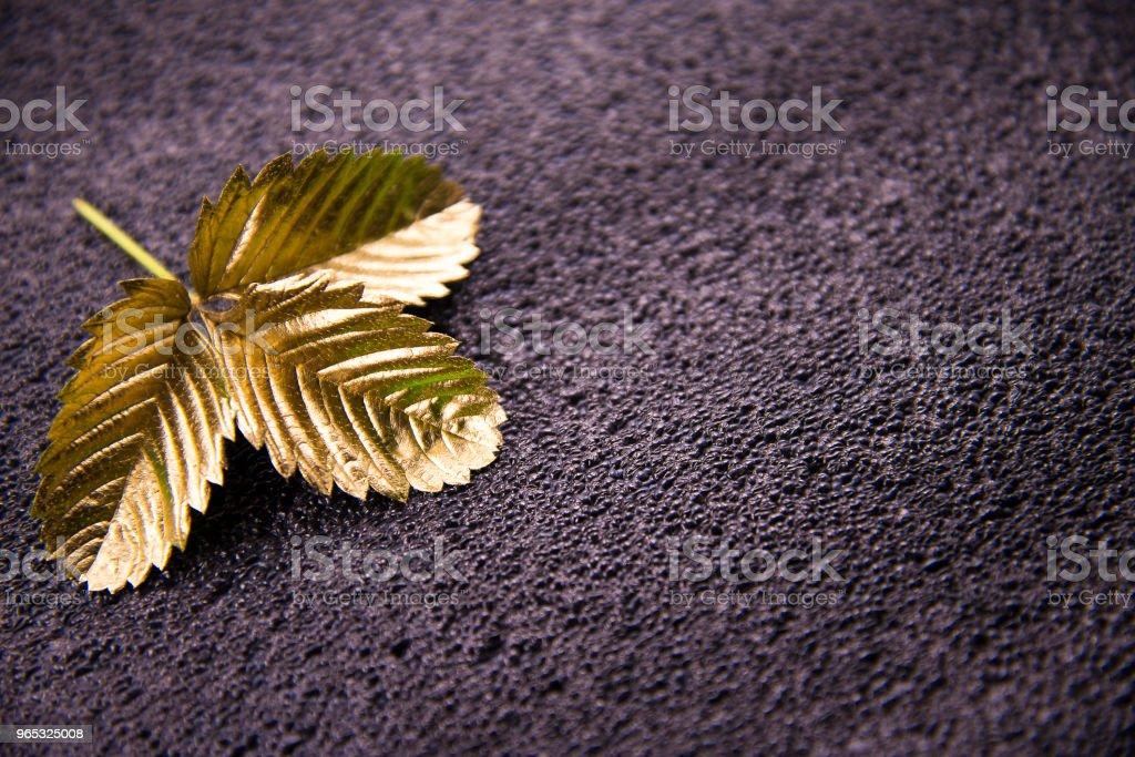 Feuille d'or sur fond foncé - Photo de Accessoire libre de droits