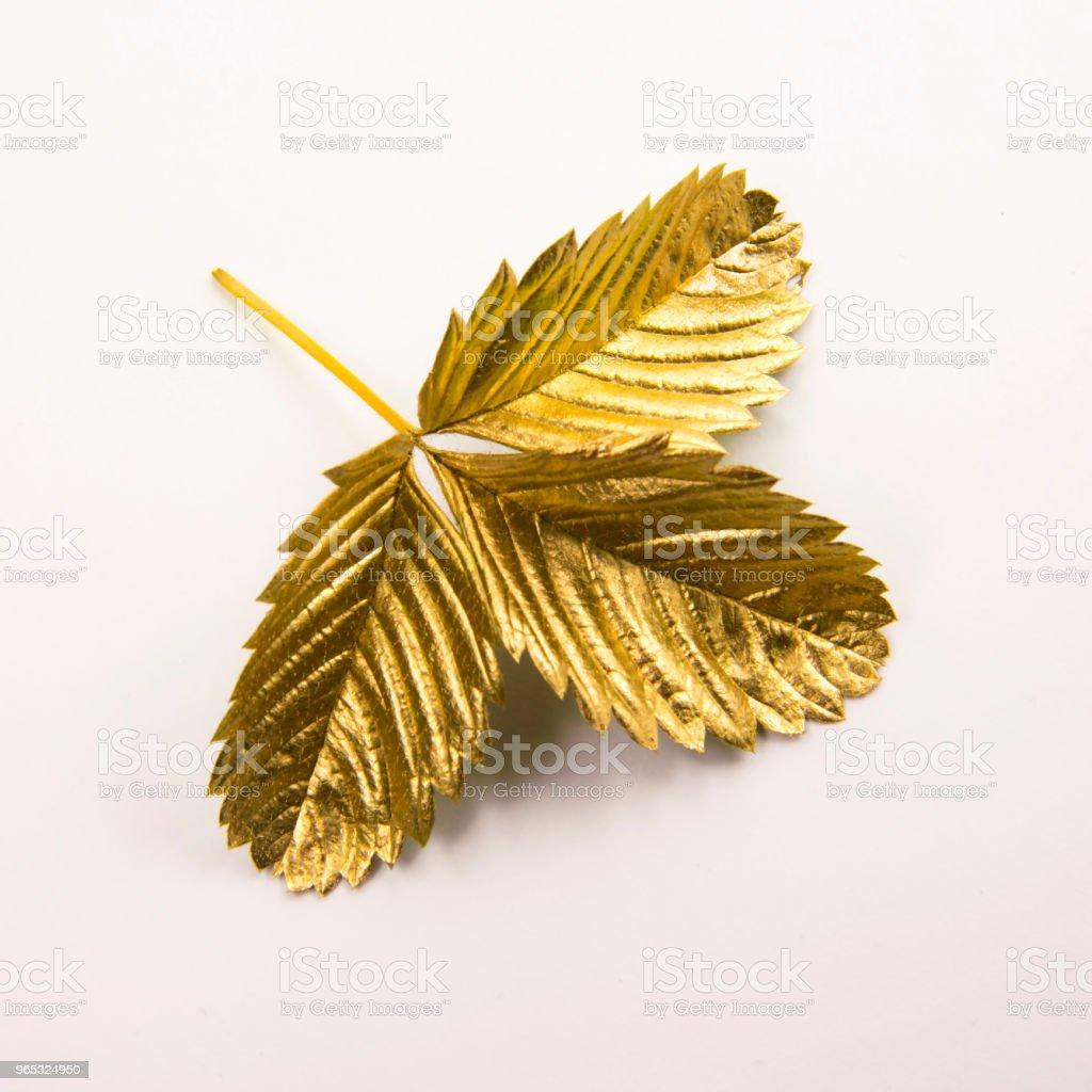 Gold leaf on white background zbiór zdjęć royalty-free