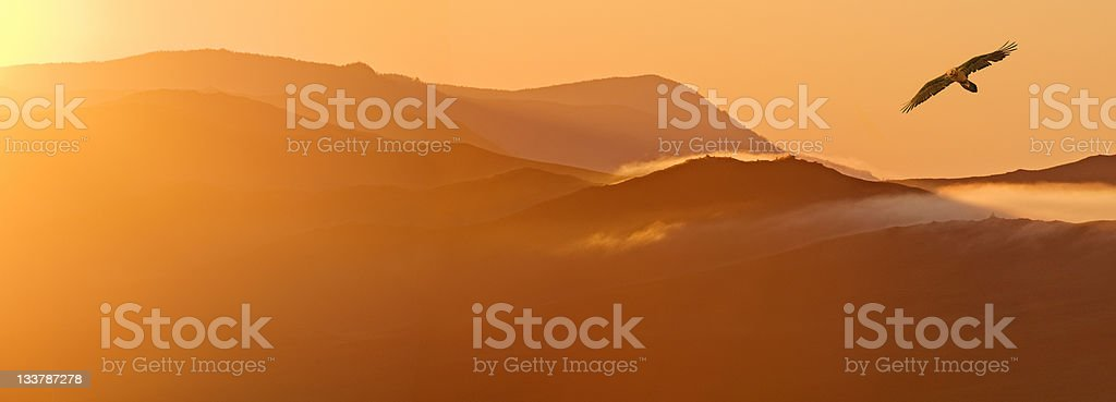 Gold mountains stock photo