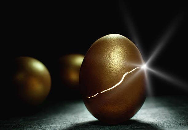 Gold nest egg coming to life Light sparkling from inside a hatching gold nest egg, a metaphor for success and investments such as retirement and savings nest egg stock pictures, royalty-free photos & images