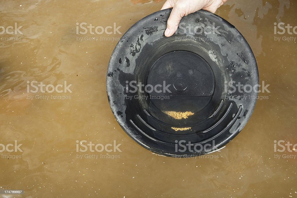 Gold Nuggets and Flakes in Pan with River Water stock photo