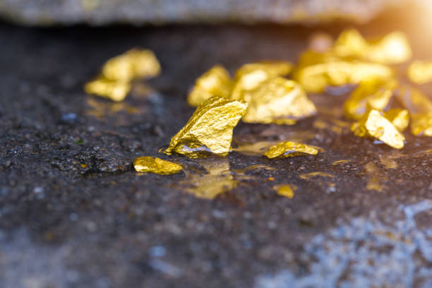 gold on the stone floor discovering success and investing concepts with business partners. - gold mine stock photos and pictures