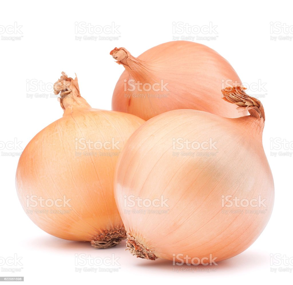 Gold onion vegetable bulbs stock photo