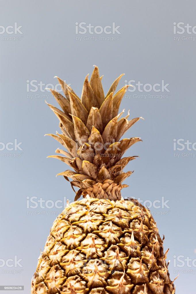 A Gold Pineapple Pattern On A Pastel Sky Background stock photo