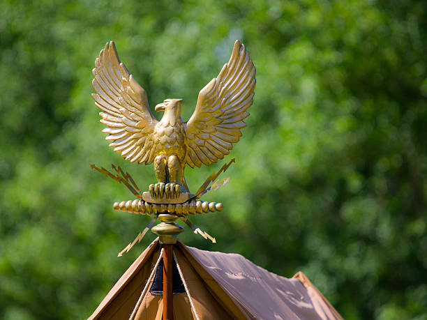 Gold roman eagle stock photo