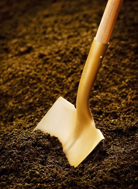 Gold Shovel stock photo