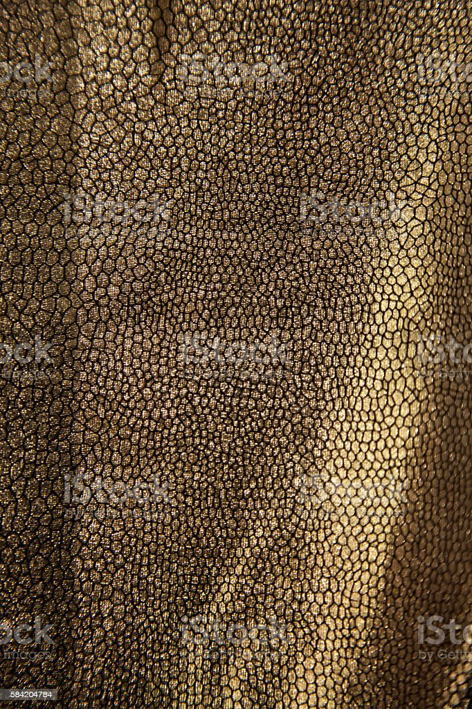 silver gold skin animal alien dinosaur reptile monster pattern...