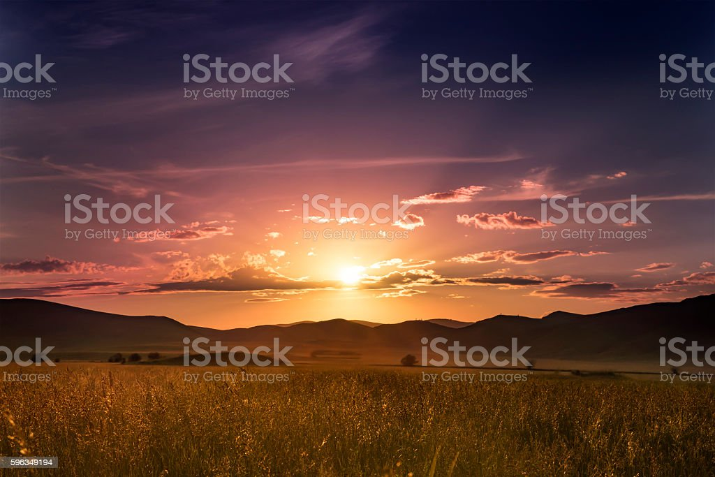 gold summer grass against the background of colourful sunset royalty-free stock photo