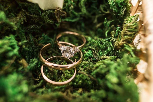 Ouro Alianças de casamento em verde backgraund - foto de acervo