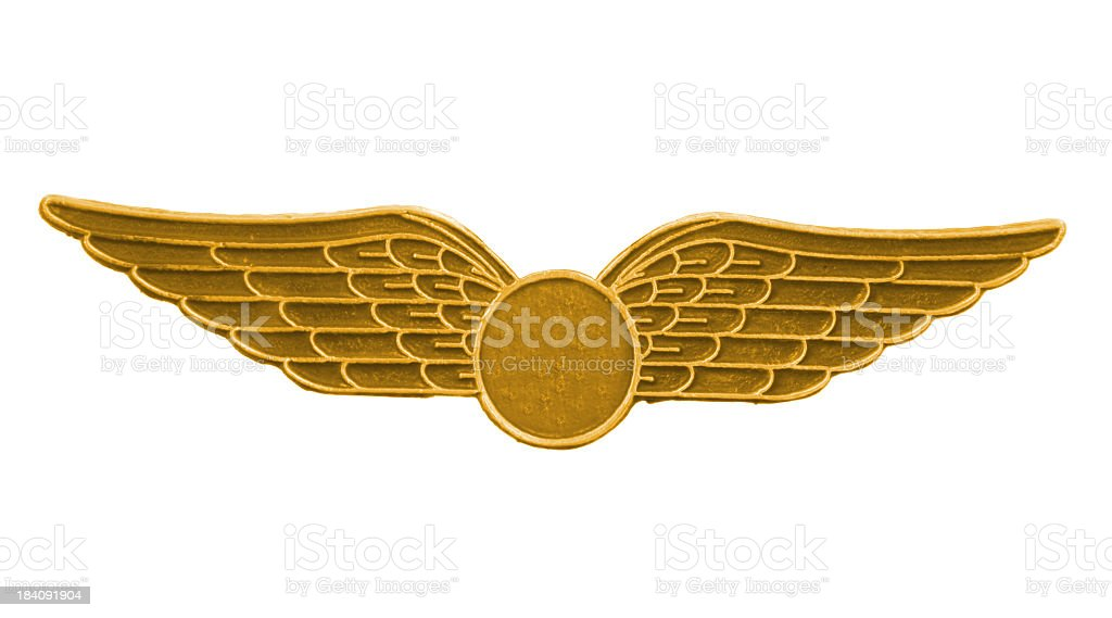 Gold wings stock photo