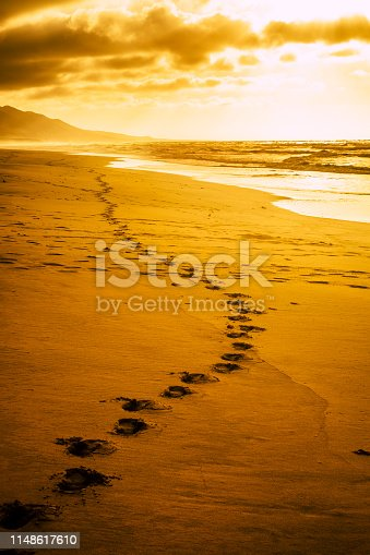 Golden amazing scenic place sunset at the wild beach with footprint - travel and discover destinations alternative inthe world - lonely and sadness motivational image