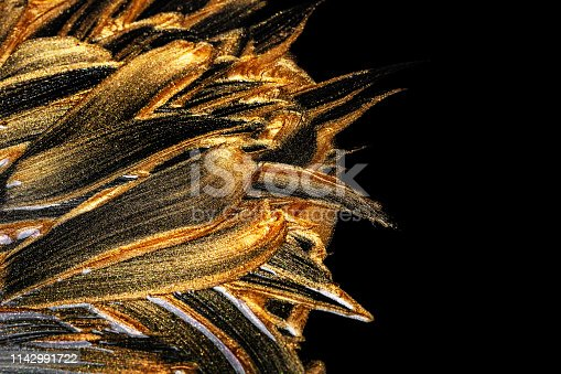 Golden and bronze brush stroke. abstract golden texture on black background
