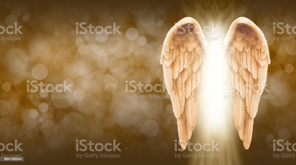 Golden Angel Wings on golden brown Bokeh Banner stock photo