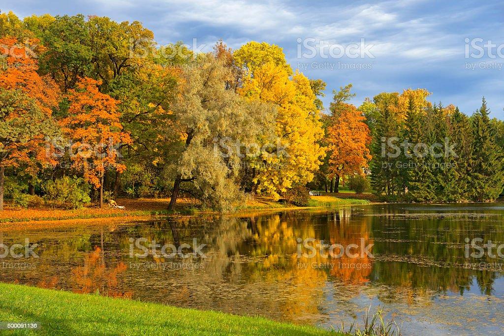 golden autumn in in Catherine park, Tsarskoye Selo (Pushkin) stock photo