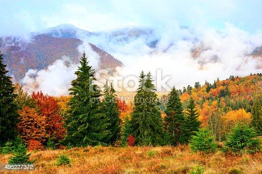 Beautiful rural scene of golden autumn in the Carpathian Mountains
