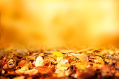 Colorful autumn leaves with golden background and short depth of field