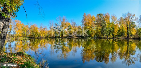 Golden foliage of fall trees around the lake reflected in blue water - autumn picturesque landscape at warm sunny september weather with clear blue sky. Beauty of nature concept. Panorama
