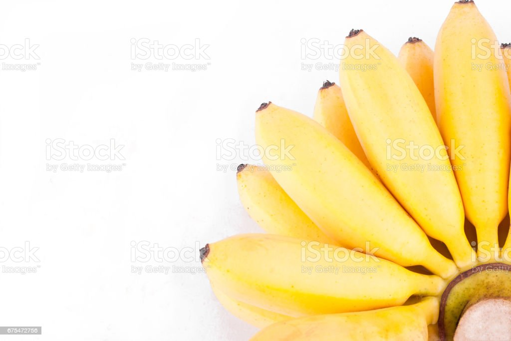 bananes dorées ou oeuf bananes sont famille Musaceae sur fond blanc Pisang Mas banane fruit des aliments sains isolé photo libre de droits
