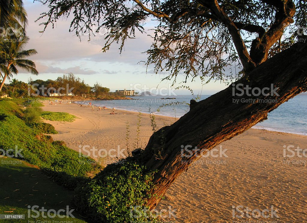 Golden Beach at Sunset, Maui, Hawaii royalty-free stock photo