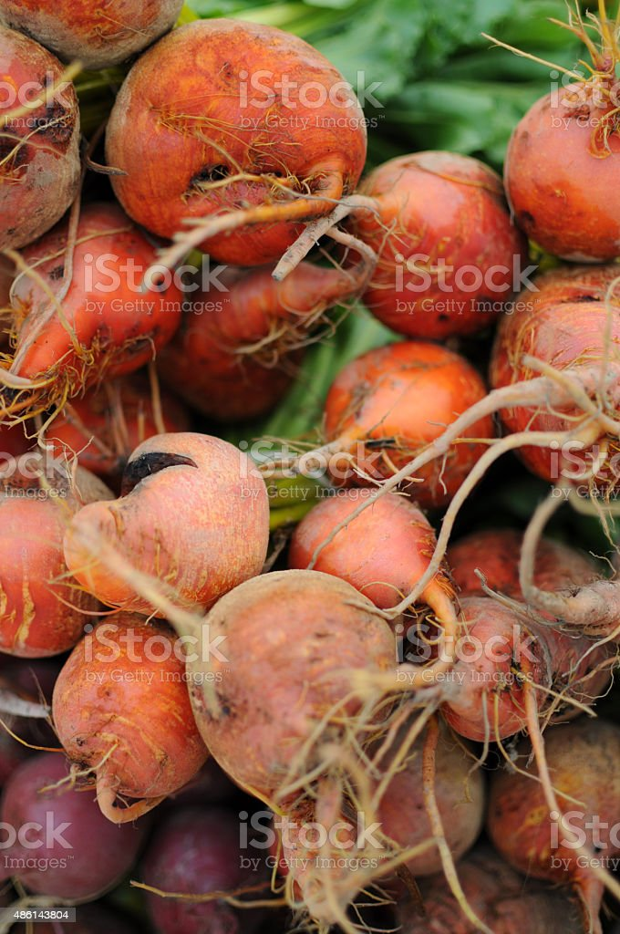 Golden Beets at the Farmer's Market stock photo