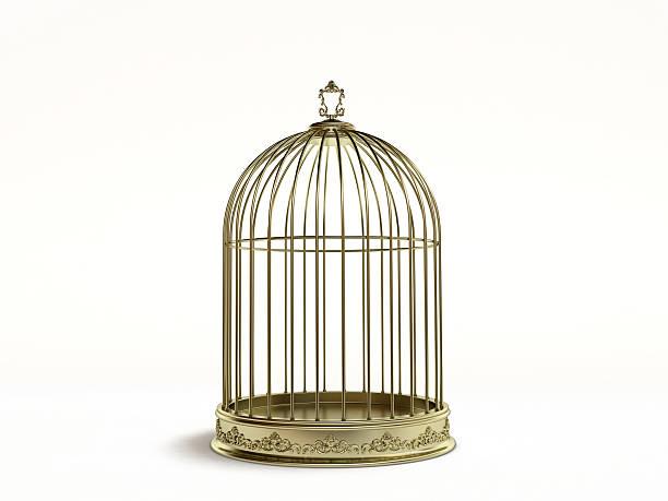 golden birds cage - kooi stockfoto's en -beelden