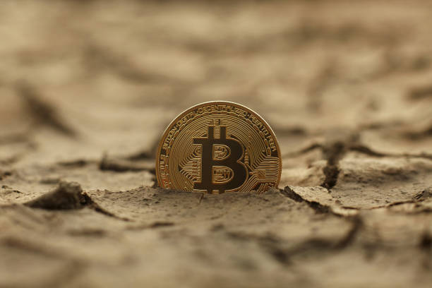Golden Bitcoin Coin on cracked ground stock photo
